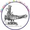 Projekty na logo MBK w grafice komputerowej.
